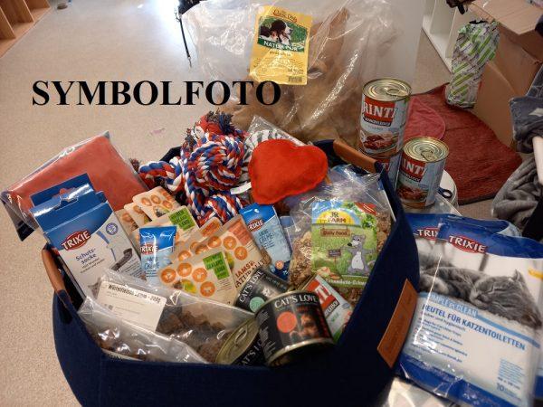 Tierheimspendenbox Hund 10€ 1