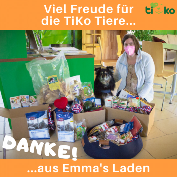 Tierheimspendenbox Hund 10€ 2