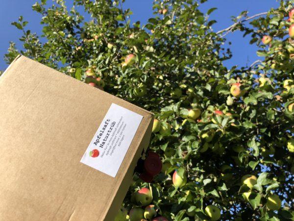 Apfelsaft in Bock