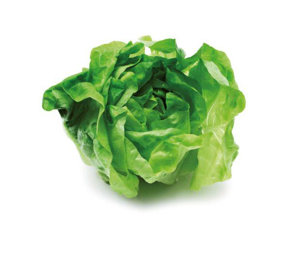 Kopfsalat aus Österreich 1