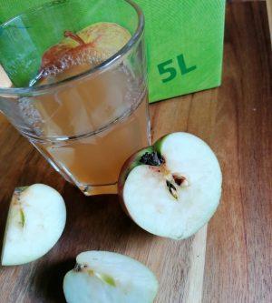 Apfelsaft im Glas
