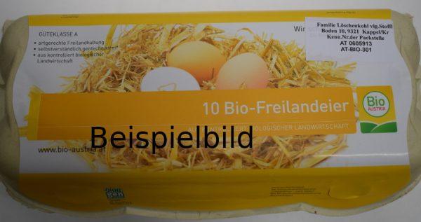 BIO-Eier 10er 1