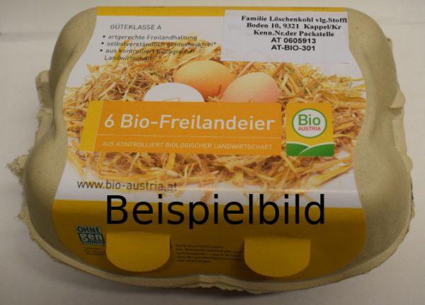 BIO-Eier 6er 1