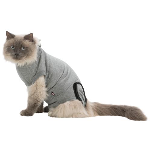 OP-Body Katze 1