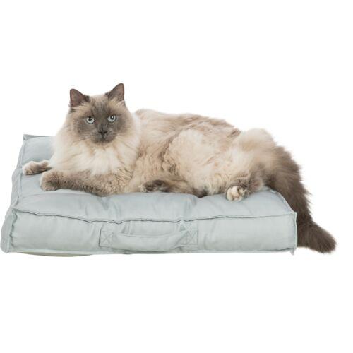 Kissen Felia 1