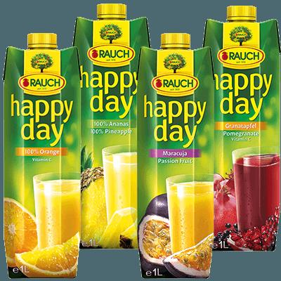 Rauch Happy Day div. Sorten | 12 x 1L (€1,19) 1