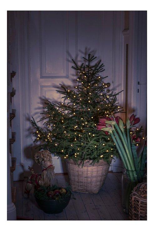 LED-Weihnachtsbeleuchtung 250LEDs 1